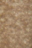 羊皮纸老纸 免版税库存图片