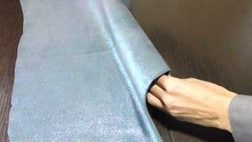 羊皮银蓝色皮革  与亮光的皮肤羊皮 隐藏 影视素材