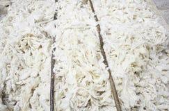 羊羊毛 免版税库存图片