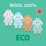 绵羊羊毛eco毡合概念 皇族释放例证
