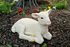 羊羔,塑料图,户外 图库摄影