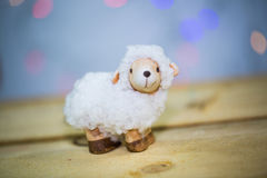 羊羔,复活节羊羔 免版税库存图片