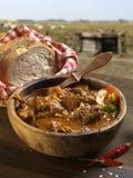 羊肉炖煮的食物 免版税图库摄影