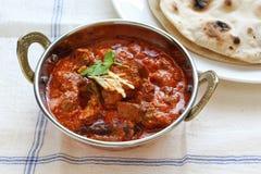 羊肉rogan josh,羊肉咖喱,印第安烹调 免版税图库摄影