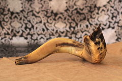 羊角号(垫铁)在白色祷告talit rosh hashanah (犹太假日)概念 传统假日标志 免版税图库摄影