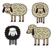 绵羊集合 免版税库存照片