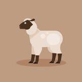 绵羊 也corel凹道例证向量 免版税库存照片