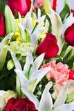 美丽上升了,康乃馨和lilly与水dro 库存照片