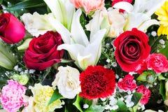 美丽上升了,康乃馨和lilly花。 免版税库存照片