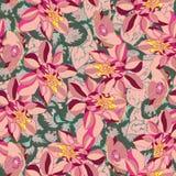 美丽和五颜六色的花无缝的样式传染媒介 免版税图库摄影