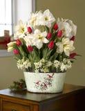 美丽和五颜六色的菊花物质设计 免版税库存图片