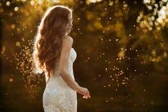 美丽和年轻深色的式样女孩,白色鞋带礼服的,站立与她在公园在日落 免版税库存图片
