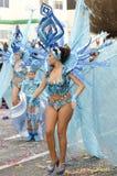 美丽和性感的妇女桑巴舞蹈家 免版税库存图片