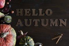 美丽土气完全失败与叶子、南瓜、栗子和信件你好秋天的位置在木背景 免版税库存图片