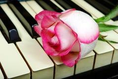 美丽在一架老钢琴上升了 免版税库存照片