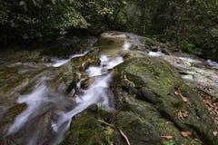 美丽在自然落下的水小河在位于马来西亚的Kanching瀑布 库存图片