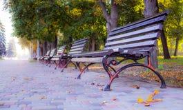 美丽如画的五颜六色的离开的秋天城市公园 免版税库存照片