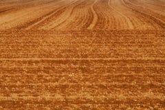 美丽如画的土壤 免版税库存照片
