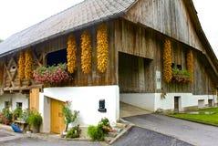 美丽如画的谷仓在欧洲的斯洛文尼亚 库存图片