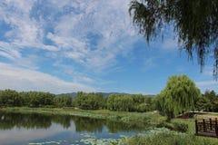 美丽如画的北部好莱坞公园 库存照片