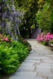 美丽如画的区域开花的日本庭院 图库摄影