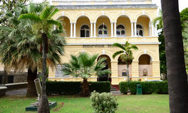 美丽如画的市毛里求斯共和国的路易港 免版税库存照片