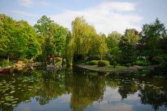 美丽如画的池塘在日本公园 免版税库存照片
