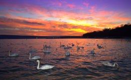 美丽如画的海边日落 库存照片