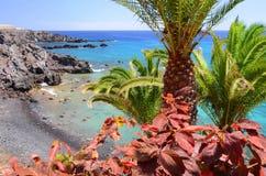 美丽如画的海滩和火山岩在特内里费岛的Alcala 免版税图库摄影