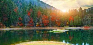 美丽如画的湖在秋天森林里 免版税库存照片