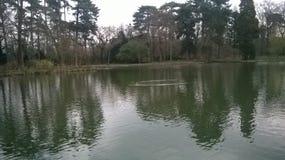 美丽如画的湖 免版税库存图片