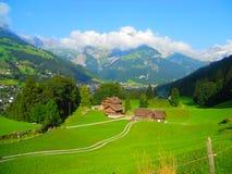 美丽如画的瑞士 库存照片