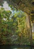 美丽如画的自然Cenote在墨西哥 库存图片
