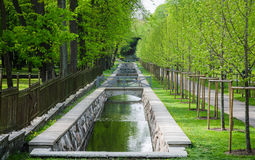 美丽如画的水运河在春天卡利柯治公园,塔林, E 免版税库存照片