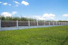 美丽工业庄园的,绿色领域篱芭工厂和 免版税库存图片
