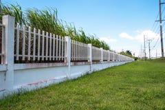 美丽工业庄园的,绿色领域篱芭工厂和 免版税库存照片