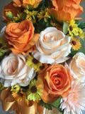 美丽橙色开花玫瑰bokeh的花 库存照片