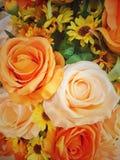 美丽橙色开花玫瑰bokeh的花 免版税库存图片