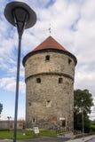 美丽的中世纪塔基克在de KA¶kk在塔林,爱沙尼亚的历史的中心 免版税库存图片