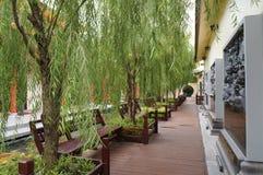 美丽的中国庭院 库存照片