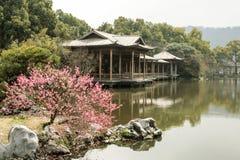 美丽的中国庭院 免版税库存图片