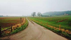 美丽的乡下在威尔士 王国团结了 免版税库存图片