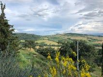 美丽的乡下在托斯卡纳意大利 免版税库存图片