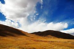 美丽的云彩和黄色gra 库存照片