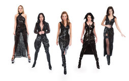 美丽的五个女孩 免版税库存照片