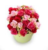 美丽的五颜六色的光盘花卉花 库存图片