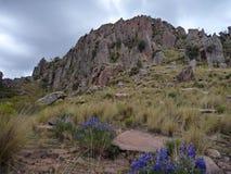 美丽的五颜六色的山山脉de los弗赖莱斯在玻利维亚 库存照片