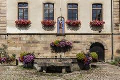 美丽的五颜六色的花在阿尔萨斯,法国 免版税库存图片