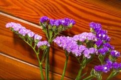 在装饰木背景的紫色花 库存图片
