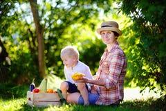 美丽的享受收获的妇女和她的小孙子 库存照片